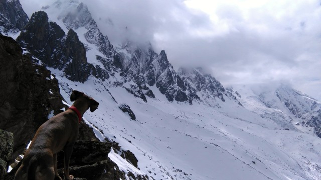 Baldric inspects the approach to the Spencer Couloir